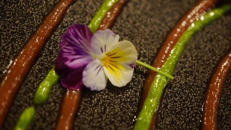 Encore une fleur